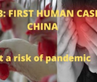 man in China's eastern province of Jiangsu has been confirmed as the first human case of infection with a rare strain of bird fl