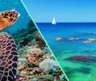 OECS Commission will host a one-day virtual seminar on Mapping Ocean Wealth and Marine Spatial Planning.