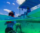 OECS and World Bank have commissioned a study to examine the Blue Economy Tourism of countries in Eastern Caribbean.