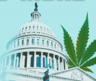 The passage of the Marijuana Opportunity Reinvestment and Expungement Act (MORE Act)