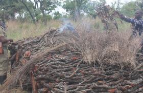 environment, charcoal burning, northern uganda