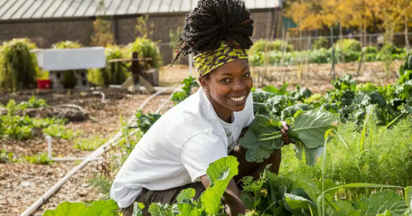 Decades of structural racism within the U.S. Department of Agriculture (USDA) have dispossessed farmers of color of their land a