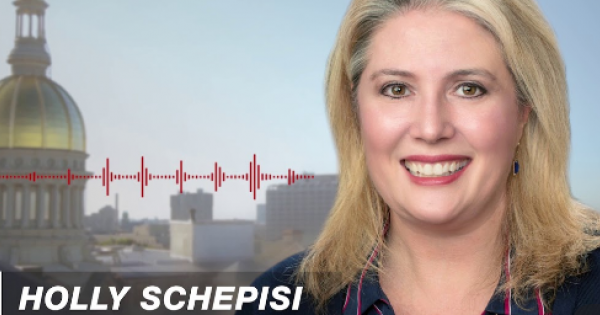State Senator Holly Schepisi's recent misleading claims about affordable housing
