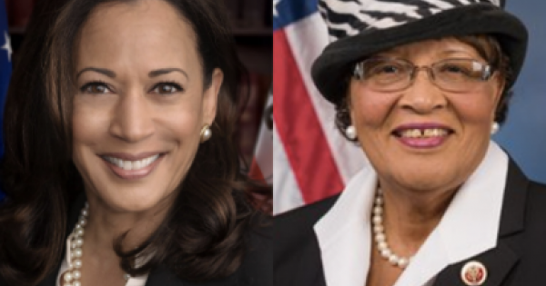 Vice-President Kamala Harris, along with Rep. Alma Adams, are pushing bill to address the racial disparity of Black maternal mor