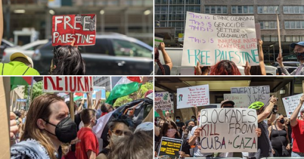 Palestinians across the occupied West Bank, the Gaza Strip, and Israel took part in an historic general strike